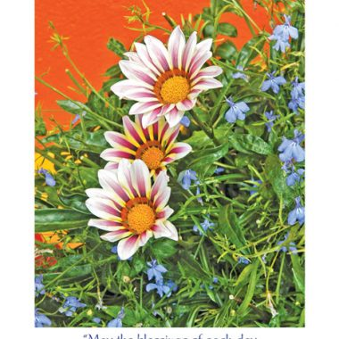 floral irish get well card with photo and matching blessing