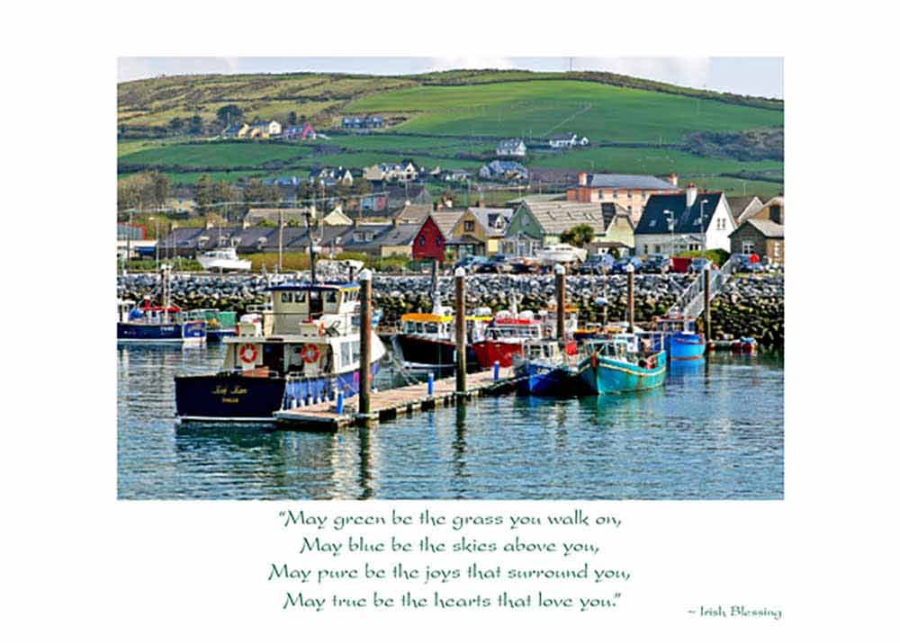Harbour Irish Birthday Card The Irish Card Shop Shop Features 140