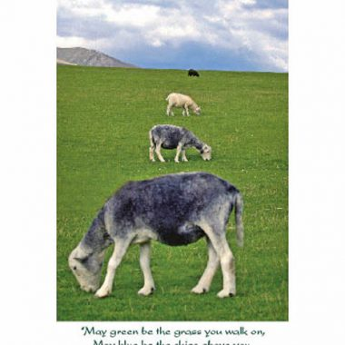 Sheep Irish birthday card