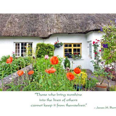 irish thatch thank you card