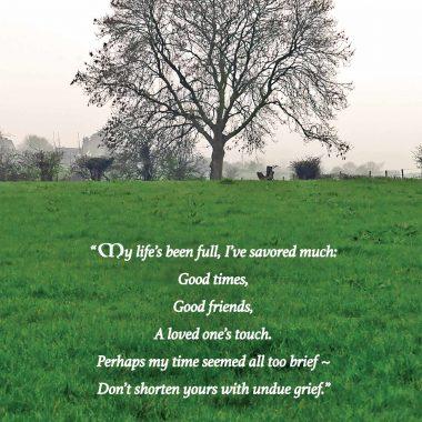 Undue-grief-irish-sympathy