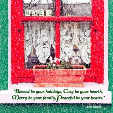 Dog in Window Christmas Card