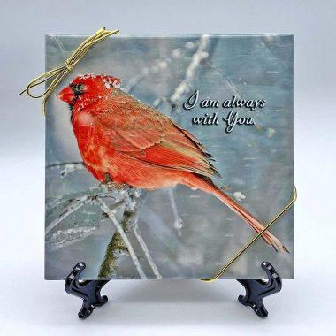 Always-with-you-cardinal