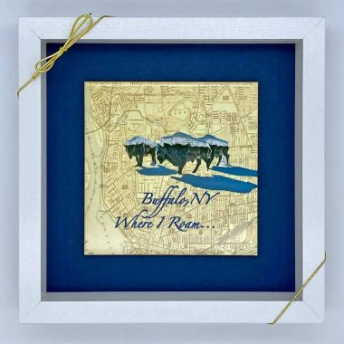 Buffalo-where-I-roam