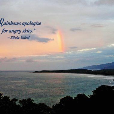 Rainbow-apology-card