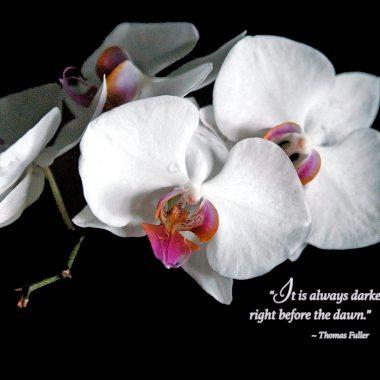 darkest before dawn sympathy card