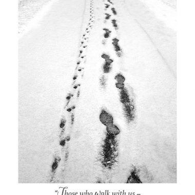 Winter dog sympathy card